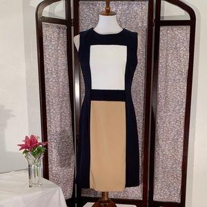 Ellen Tracy black paneled sleeveless dress.